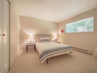 Photo 12: 1038 STEPHENS Road: Roberts Creek House for sale (Sunshine Coast)  : MLS®# R2554256