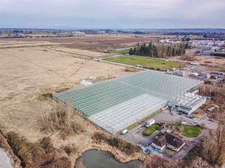 Photo 3: 7072 152 Street in Surrey: Fleetwood Tynehead Agri-Business for sale : MLS®# C8037524