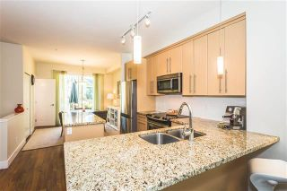 Photo 5: 18 8250 209 B Street in Langley: Condo for sale : MLS®# R2181074