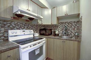 Photo 27: 208 Taradale Drive NE in Calgary: Taradale Detached for sale : MLS®# A1067291