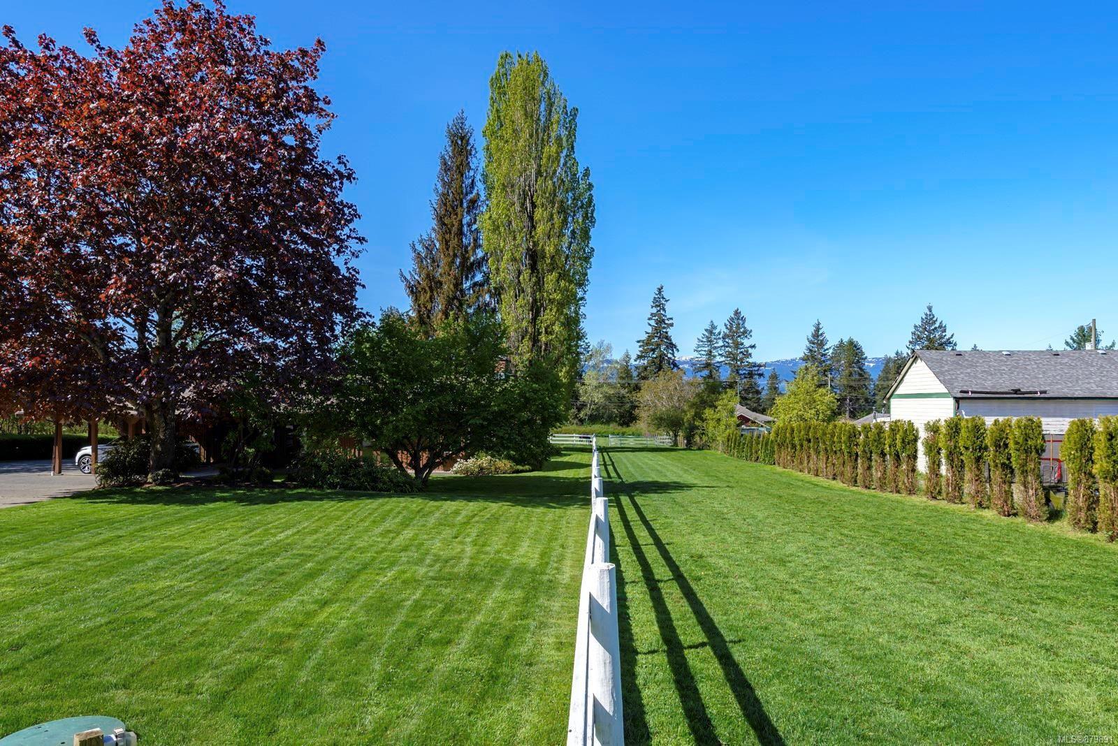Photo 34: Photos: Vancouver Island Horse Property