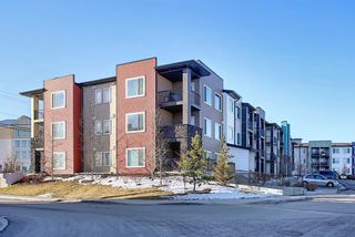 Photo 27: 110 20 Sage Hill Terrace NW in Calgary: Sage Hill Apartment for sale : MLS®# A1066999