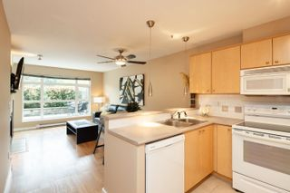 """Photo 6: 227 3122 ST JOHNS Street in Port Moody: Port Moody Centre Condo for sale in """"SONRISA"""" : MLS®# R2620860"""