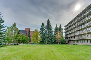 Photo 33: 702 3339 RIDEAU Place SW in Calgary: Rideau Park Apartment for sale : MLS®# C4266396
