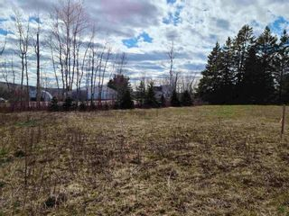 Photo 3: 35 Valley Road in Westchester Station: 103-Malagash, Wentworth Vacant Land for sale (Northern Region)  : MLS®# 202109984
