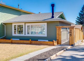 Main Photo: 229 84 Avenue SE in Calgary: Acadia Semi Detached for sale : MLS®# A1095856