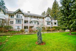 """Photo 1: 303 7383 GRIFFITHS Drive in Burnaby: Highgate Condo for sale in """"18 TREES"""" (Burnaby South)  : MLS®# R2436081"""
