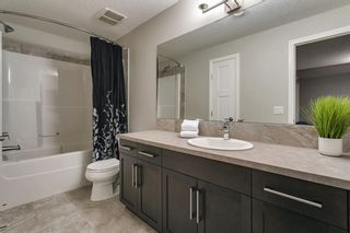 Photo 38: 56 Masters Rise SE in Calgary: Mahogany Detached for sale : MLS®# A1112189