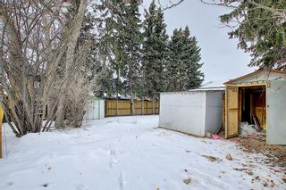 Photo 48: 429 1 Avenue NE: Airdrie Detached for sale : MLS®# A1071965