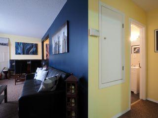 Photo 13: 425 Crescent Road E in Portage la Prairie: House for sale : MLS®# 202101949