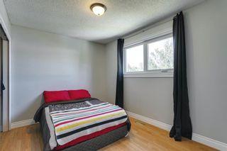 Photo 18: 111 Deerpath Court SE in Calgary: Deer Ridge Detached for sale : MLS®# A1121125