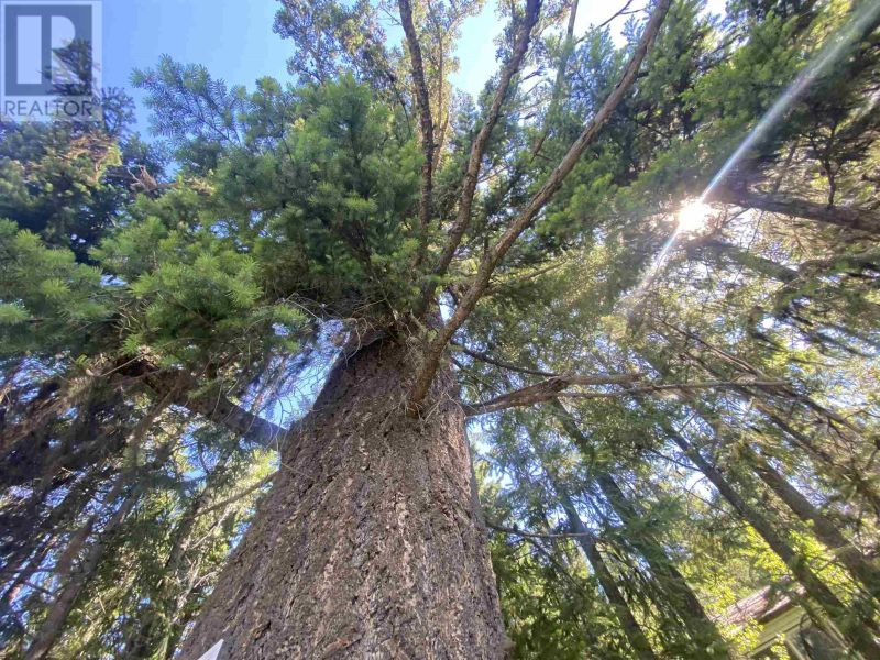 FEATURED LISTING: LOT - 4 WILCOX Road Forest Grove