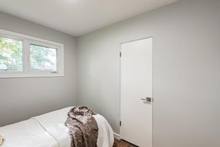 Photo 21: 78 Franklin Drive in Calgary: Fairview Detached for sale : MLS®# A1142495