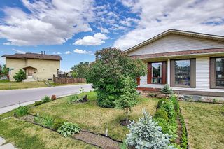 Photo 41: 217 Templemont Drive NE in Calgary: Temple Semi Detached for sale : MLS®# A1120693