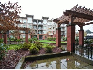 """Photo 16: 119 33539 HOLLAND Avenue in Abbotsford: Central Abbotsford Condo for sale in """"The Crossing"""" : MLS®# F1427624"""
