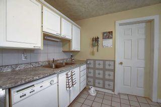 Photo 9: 11833 94 Street in Edmonton: Zone 05 House for sale : MLS®# E4263415