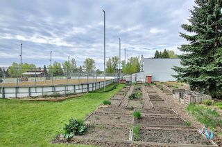 Photo 42: 3205 16 Street SW in Calgary: South Calgary Row/Townhouse for sale : MLS®# A1122787