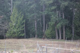 Photo 4: 2858 Phillips Rd in : Sk Phillips North House for sale (Sooke)  : MLS®# 867290