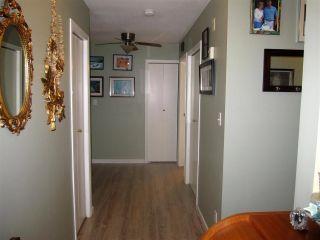 "Photo 12: 115 11601 227 Street in Maple Ridge: East Central Condo for sale in ""CASTLEMOUNT / FRASERVIEW VILLAGE"" : MLS®# R2312329"