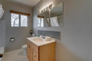 Photo 26: 219 Hendon Drive NW in Calgary: Highwood Detached for sale : MLS®# A1102936