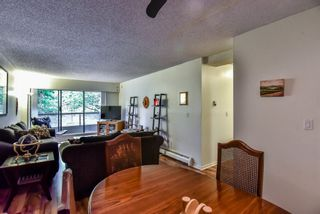 """Photo 4: 105 225 MOWAT Street in New Westminster: Uptown NW Condo for sale in """"THE WINDSOR"""" : MLS®# R2295309"""