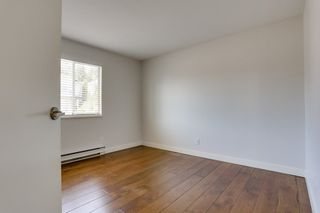 Photo 8: 2917 WALTON Avenue in Coquitlam: Canyon Springs House for sale : MLS®# R2569168