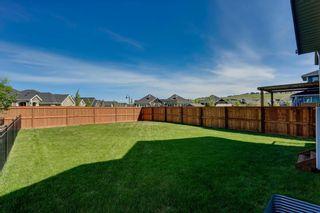 Photo 45: 39 CRANBROOK Lane SE in Calgary: Cranston Detached for sale : MLS®# C4247502