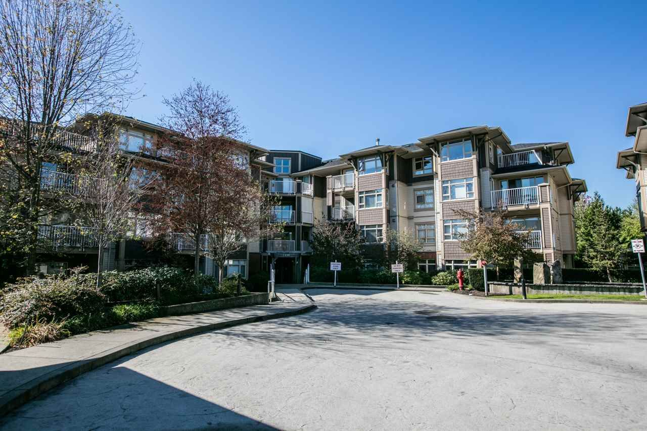 """Photo 14: Photos: 102 7339 MACPHERSON Avenue in Burnaby: Metrotown Condo for sale in """"CADENCE"""" (Burnaby South)  : MLS®# R2004673"""
