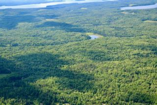 Photo 7: 16536 Rainy Lake in Fort Frances: Vacant Land for sale : MLS®# TB212374