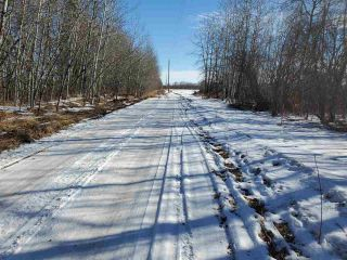 Photo 3: 50317 Rge Road 10: Rural Parkland County Rural Land/Vacant Lot for sale : MLS®# E4229985