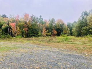 Photo 2: 3720 Highway 2 in Fletchers Lake: 30-Waverley, Fall River, Oakfield Vacant Land for sale (Halifax-Dartmouth)  : MLS®# 202020446