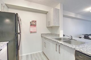 Photo 7: 3420 4641 128 Avenue NE in Calgary: Skyview Ranch Apartment for sale : MLS®# A1106326