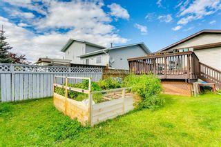 Photo 31: 103 WHITERAM Close NE in Calgary: Whitehorn Detached for sale : MLS®# C4268249
