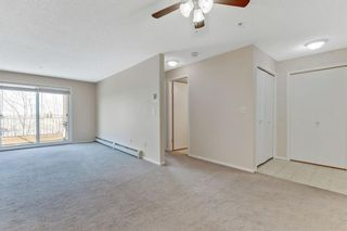 Photo 8: 328 1717 60 Street SE in Calgary: Red Carpet Apartment for sale : MLS®# A1090437