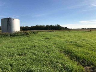 Photo 23: 57525 Rg Rd 214: Rural Sturgeon County Rural Land/Vacant Lot for sale : MLS®# E4237624