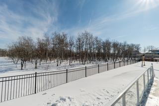 Photo 65: 27 Bridlewood Road | Bridgwater Forest Winnipeg