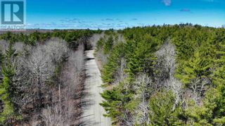 Photo 6: Lot 2 Labelle Road in Molega: Vacant Land for sale : MLS®# 202108292