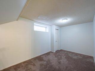 Photo 24: 623 Taradale Drive NE in Calgary: Taradale Detached for sale : MLS®# A1127134