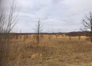 Photo 7: 0 85N Road in St Clements: Vacant Land for sale : MLS®# 202108101