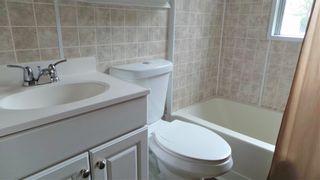 Photo 9: 12114 43 Street in Edmonton: Zone 23 House for sale : MLS®# E4250644