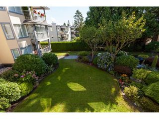 Photo 16: 200 1459 BLACKWOOD Street: White Rock Condo for sale (South Surrey White Rock)  : MLS®# R2491056