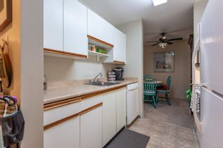Photo 4: 213 585 Dogwood St in : CR Campbell River Central Condo for sale (Campbell River)  : MLS®# 876595