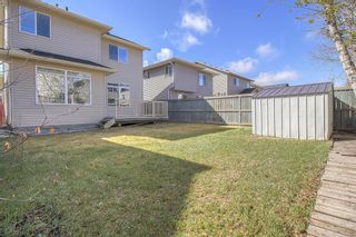 Photo 46: 303 Chapalina Terrace SE in Calgary: Chaparral Detached for sale : MLS®# A1079519