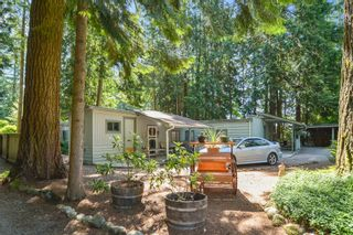 Photo 31: 14244 SILVER VALLEY Road in Maple Ridge: Silver Valley House for sale : MLS®# R2594780
