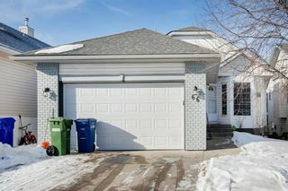 Photo 1: 66 Jensen Heights Place NE: Airdrie Detached for sale : MLS®# A1065376
