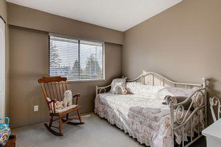 Photo 12: 11998 210TH Street in Maple Ridge: Southwest Maple Ridge House for sale : MLS®# R2553047