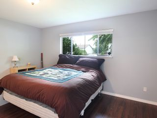 Photo 12: 9223 210TH ST in Langley: Walnut Grove House for sale : MLS®# F1320632