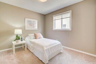 Photo 29: 3441 28 Street in Edmonton: Zone 30 House for sale : MLS®# E4248007