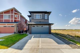 Photo 45: 28 Walgrove Landing SE in Calgary: Walden Detached for sale : MLS®# A1137491