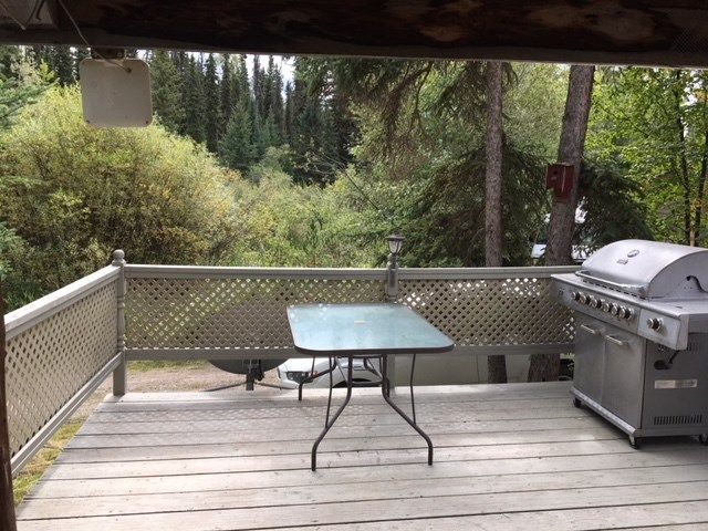 """Photo 11: Photos: 4371 BLACKWATER Road in Quesnel: Bouchie Lake House for sale in """"BLACKWATER - NAZKO"""" (Quesnel (Zone 28))  : MLS®# R2402787"""
